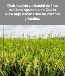 Cultivos agrícolas bajo escenarios el cambio climático